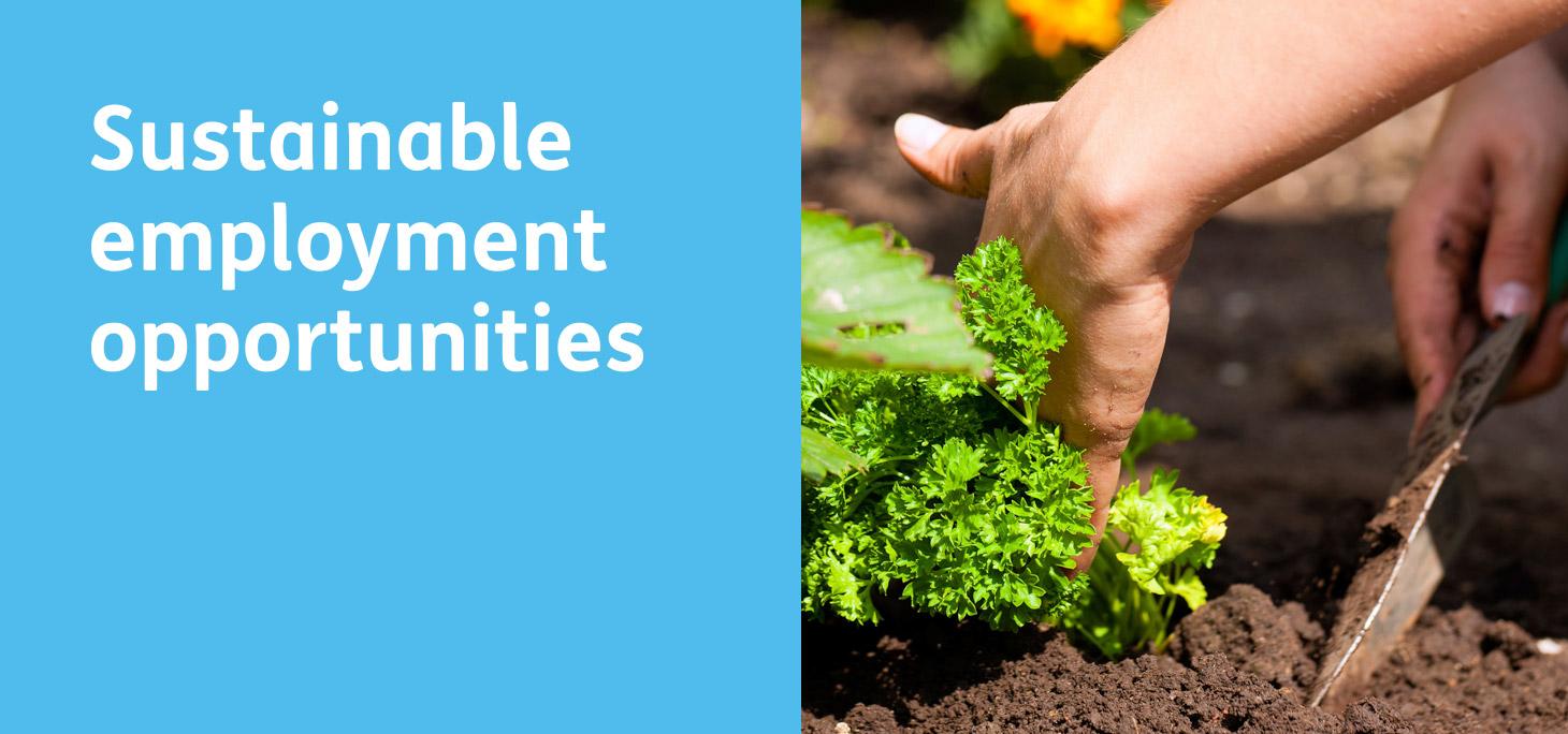 Guernsey Employment Trust - Sustainable employment